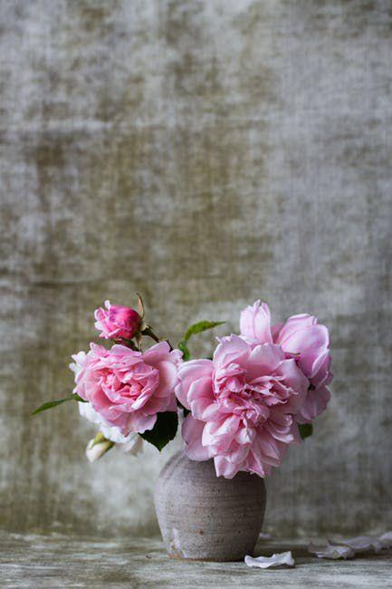 Wundermittel Aspirin: 4 geniale Hacks mit der Brausetablette
